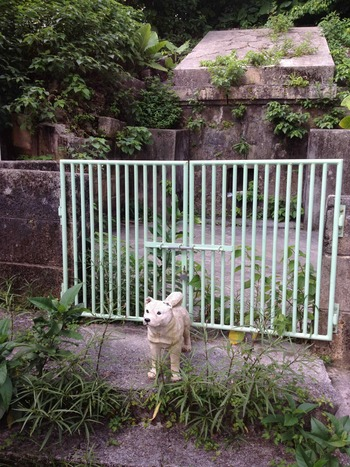 仲村清司の沖縄移住録@2018:那覇路地裏の風景