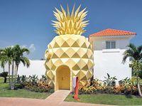 パイナップルの家だぁ~!