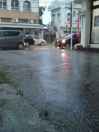 梅雨だねぇ~。