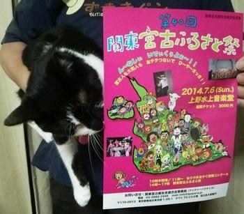 猫充の美術館巡礼&婚活セミナー開催