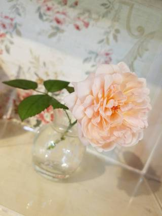 バラの花 天然香房 沖縄市 高原 アロマ ハーブ