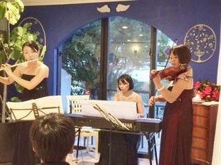 天然香房にてルーチェさん演奏2015年